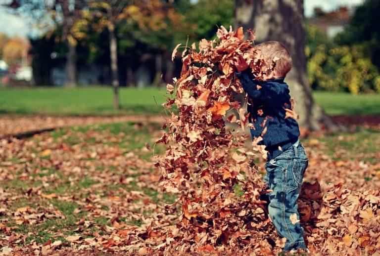 Preschool Fall Activities 2019