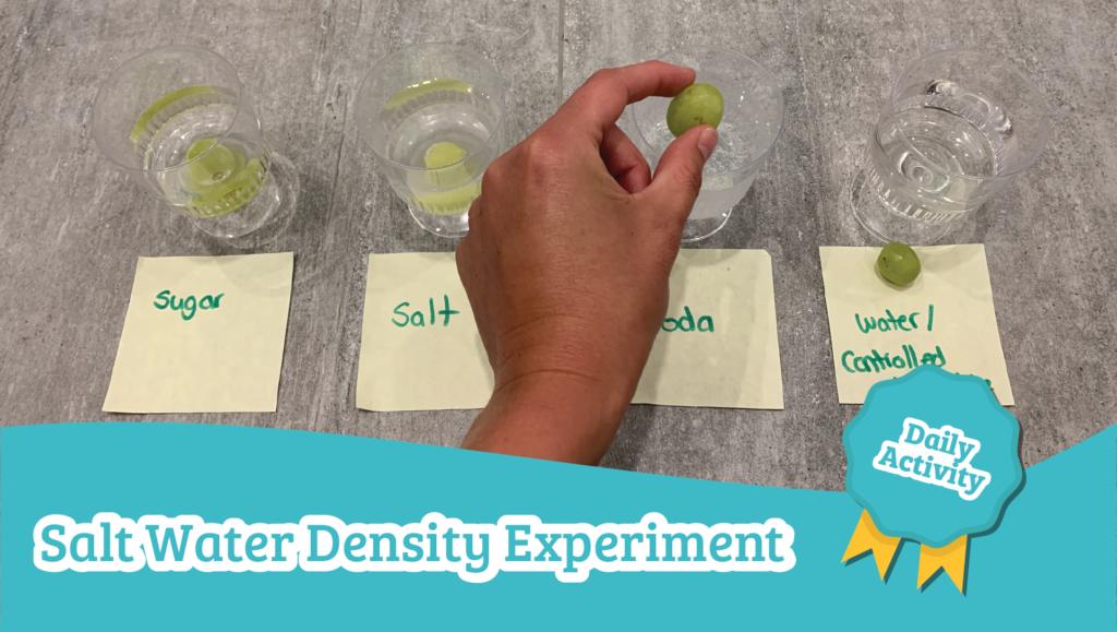 salt water density experiment preschool science activity