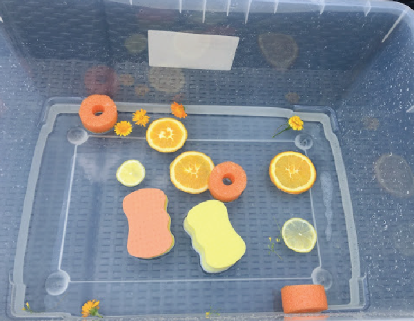 summery sensory bin fine motor activity for preschoolers and toddlers